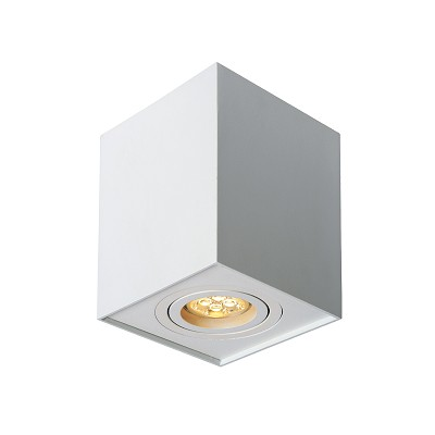 TUBE DOWNLIGHT 3+FNTH5802/W