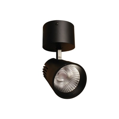 Surface Mounted Spotlight Mousse 24W